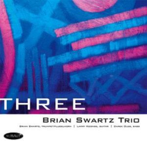 Three – Brian Swartz Trio