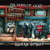 The Perfect Leaf - Sylvan Street